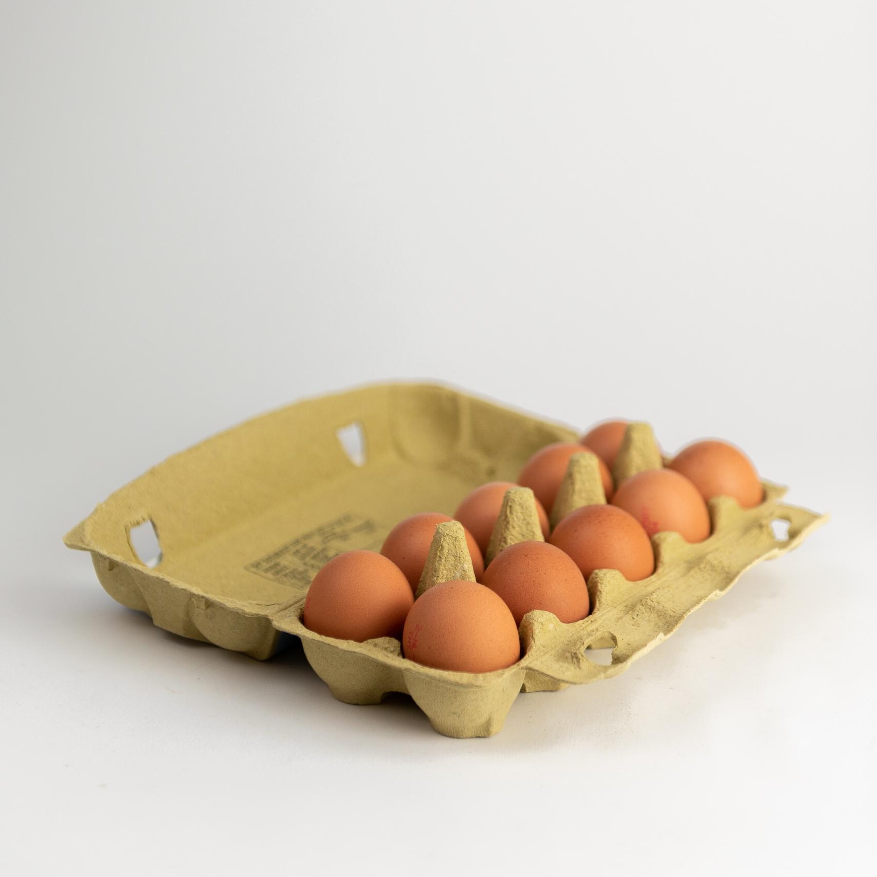 Doos eieren | 10 stuks